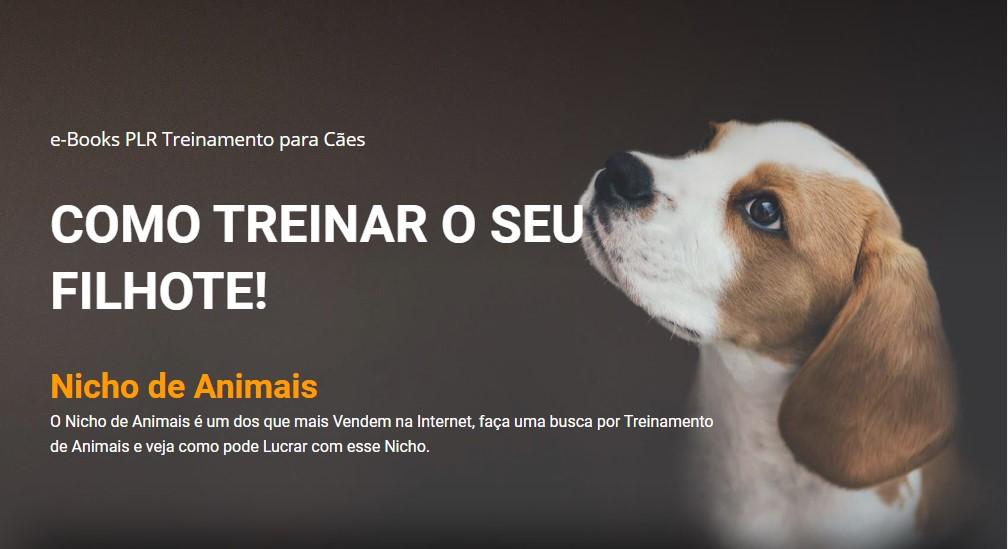 modelo página de vendas treinamento cães
