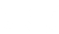 arrows-white-down-21.png